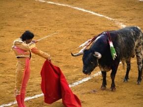 """Today I learned """"La lucha del hombre contra la bestia"""""""